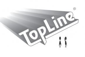 TOPLINE工艺试验芯片、空芯片、模拟芯片